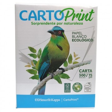 RESMA CARTOPRINT CARTA 75GR